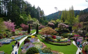 The Butchart Gardens ...