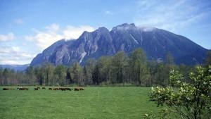 Mount Si (Photo sur Wikipedia car j'ai pas eu une vue aussi claire)